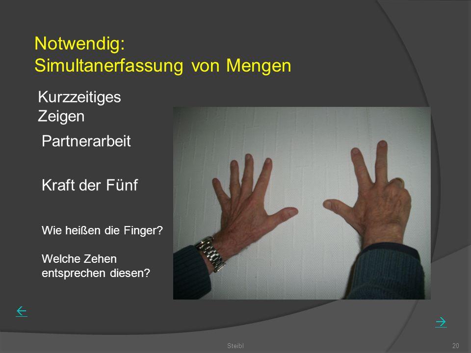 Steibl20 Kurzzeitiges Zeigen Partnerarbeit Kraft der Fünf Wie heißen die Finger? Welche Zehen entsprechen diesen? Notwendig: Simultanerfassung von Men