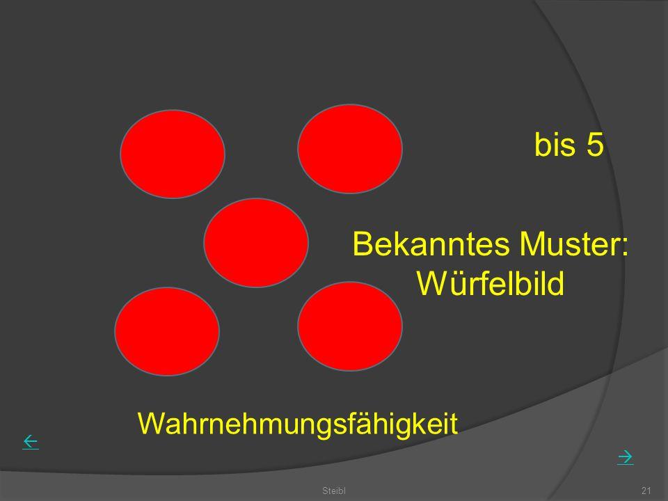bis 5 Bekanntes Muster: Würfelbild Wahrnehmungsfähigkeit Steibl21
