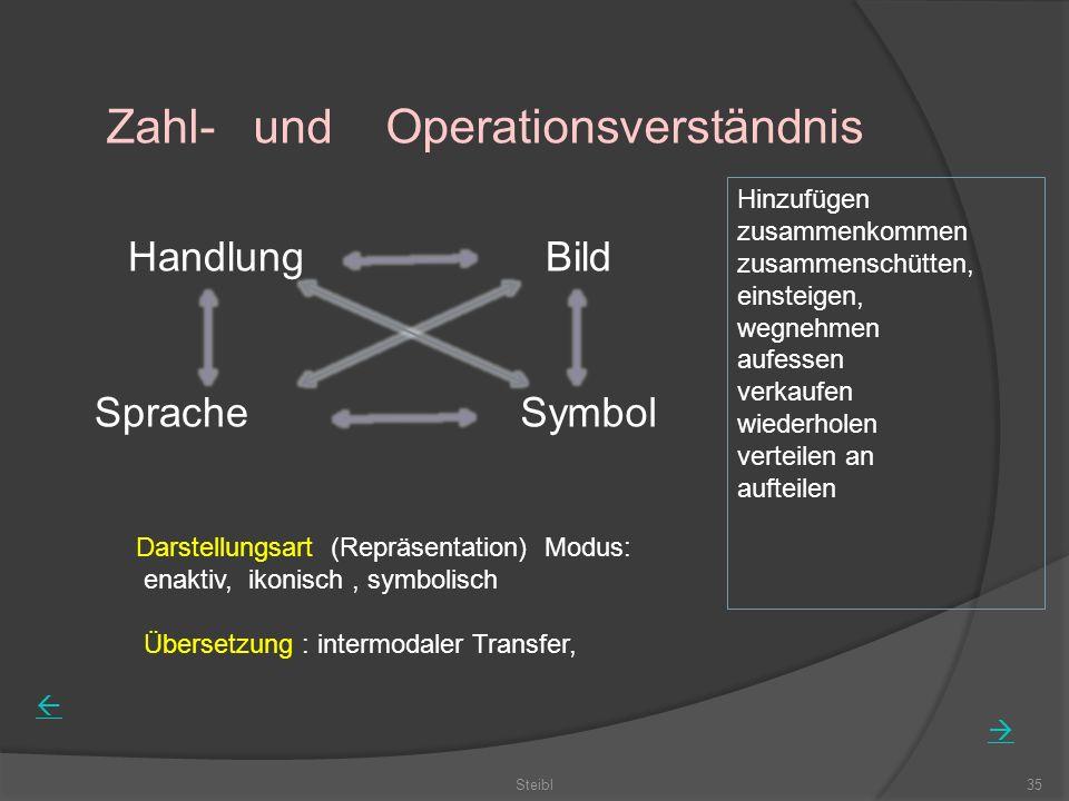 Steibl35 Zahl- und Operationsverständnis HandlungBild SpracheSymbol Darstellungsart (Repräsentation) Modus: enaktiv, ikonisch, symbolisch Übersetzung : intermodaler Transfer, Hinzufügen zusammenkommen zusammenschütten, einsteigen, wegnehmen aufessen verkaufen wiederholen verteilen an aufteilen