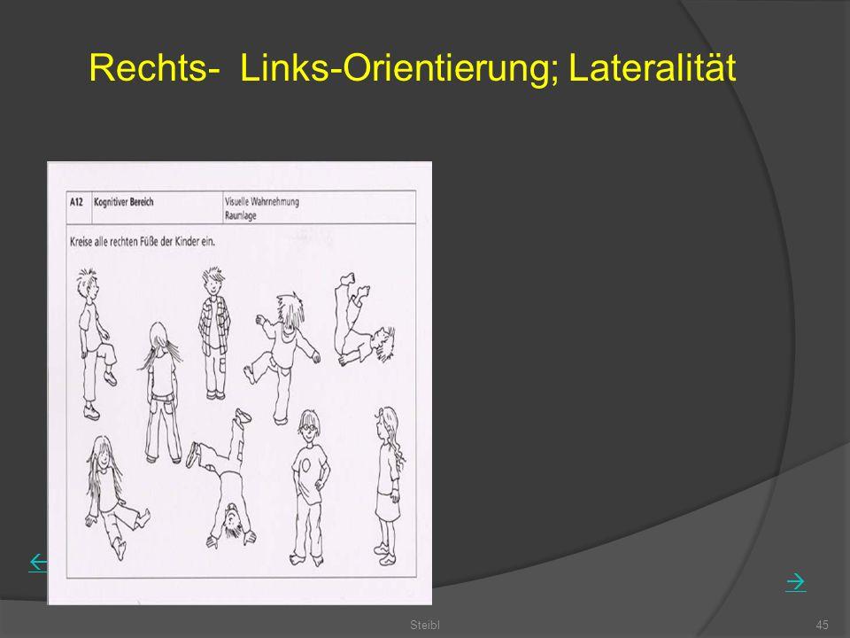 Steibl45 Rechts- Links-Orientierung; Lateralität