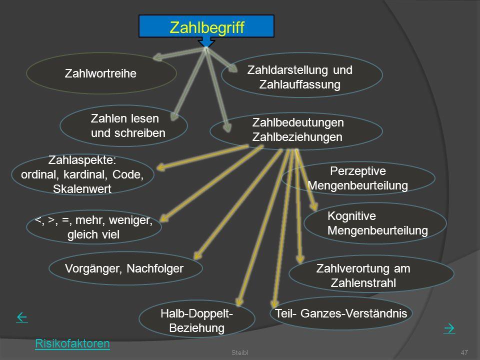 Steibl47 Zahlbegriff Zahlwortreihe Zahldarstellung und Zahlauffassung Zahlen lesen und schreiben Zahlbedeutungen Zahlbeziehungen Zahlaspekte: ordinal,