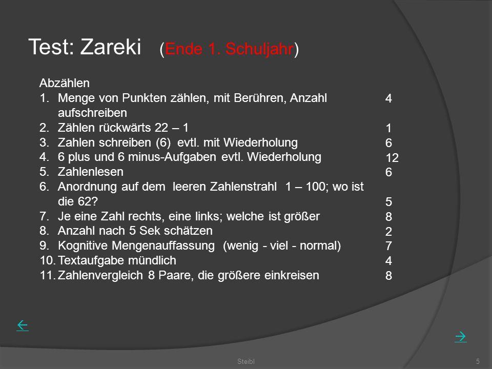 Steibl5 Test: Zareki (Ende 1.