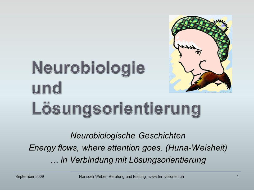 Neurobiologische Geschichten Energy flows, where attention goes.