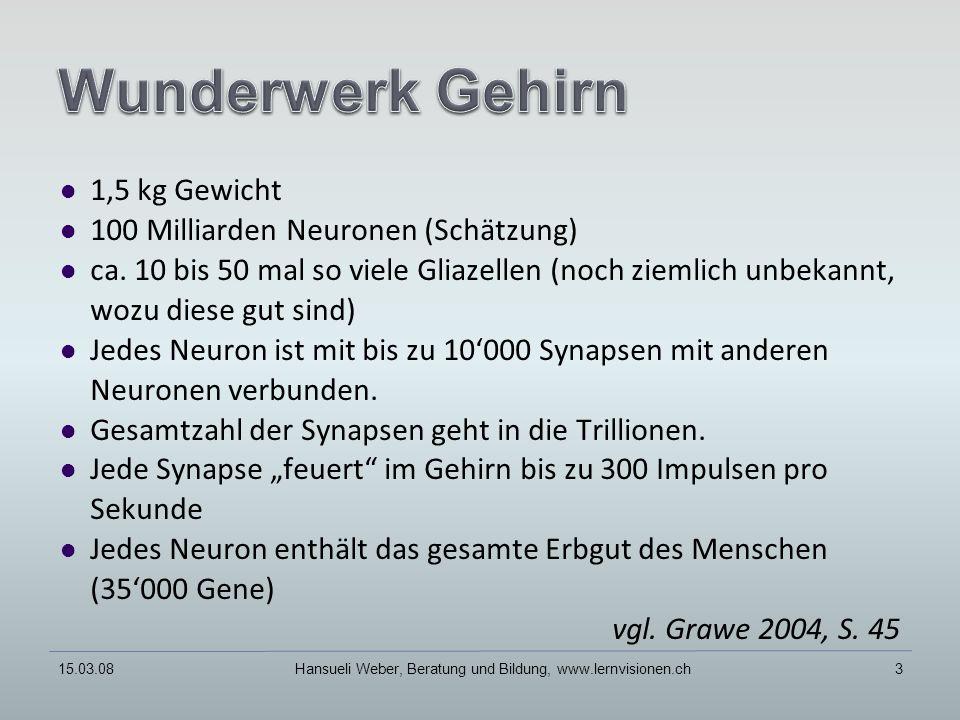 15.03.08Hansueli Weber, Beratung und Bildung, www.lernvisionen.ch3 1,5 kg Gewicht 100 Milliarden Neuronen (Schätzung) ca.