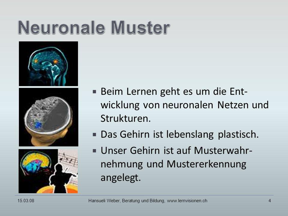Beim Lernen geht es um die Ent- wicklung von neuronalen Netzen und Strukturen.