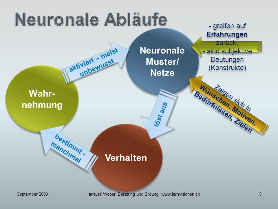 Wahr- nehmung September 2009Hansueli Weber, Beratung und Bildung, www.lernvisionen.ch5 Neuronale Muster/ Netze Neuronale Muster/ Netze - greifen auf Erfahrungen zurück, - sind subjektive Deutungen (Konstrukte) - greifen auf Erfahrungen zurück, - sind subjektive Deutungen (Konstrukte) aktiviert – meist unbewusst Zeigen sich in Wünschen, Motiven, Bedürfnissen, Zielen Zeigen sich in Wünschen, Motiven, Bedürfnissen, Zielen Verhalten löst aus bestimmt - manchmal