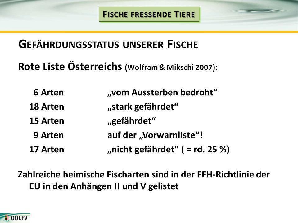 Rote Liste Österreichs (Wolfram & Mikschi 2007): 6 Arten vom Aussterben bedroht 18 Arten stark gefährdet 15 Arten gefährdet 9 Artenauf der Vorwarnlist