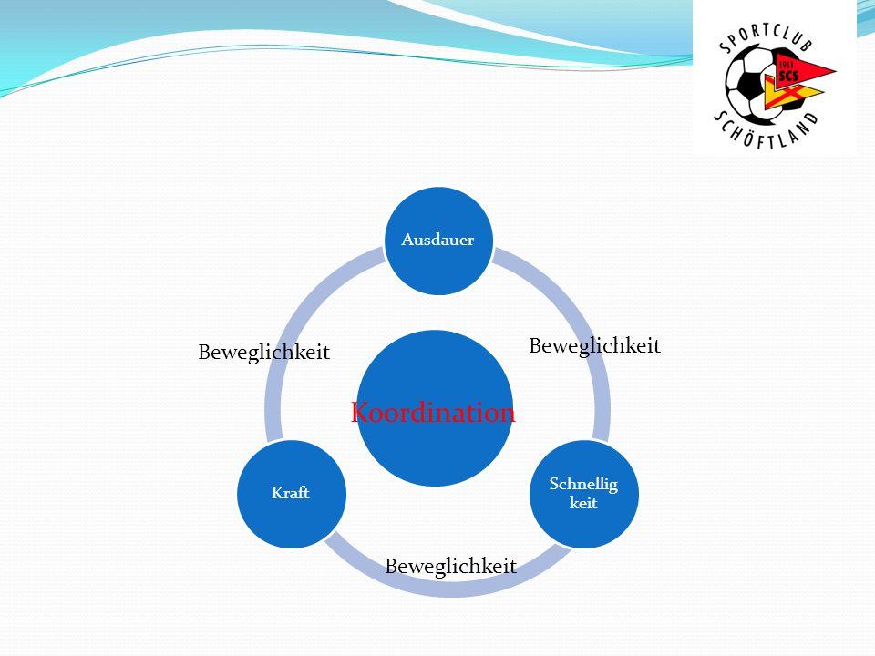Koordinative Fähigkeiten Gleichgewichtsfähigkeit Reaktionsfähigkeit DifferenzierungsfähigkeitOrientierungsfähigkeit Rhythmisierungsfähigkeit