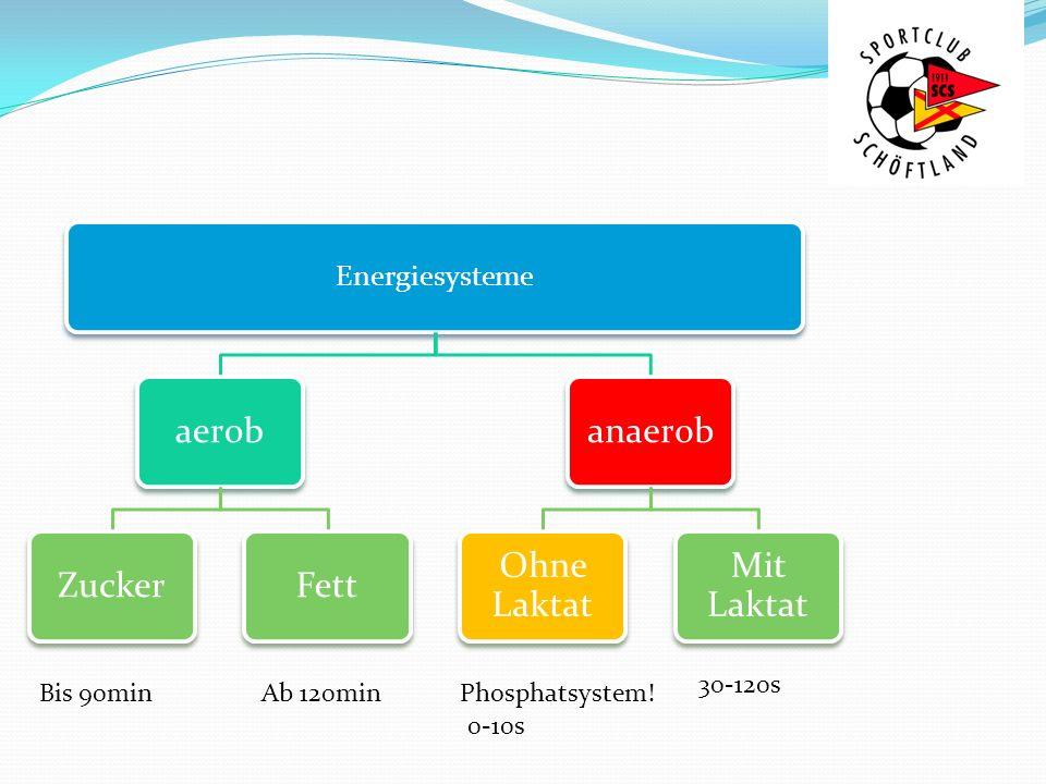 Energiesysteme aerobZuckerFettanaerob Ohne Laktat Mit Laktat Phosphatsystem!Bis 90minAb 120min 0-10s 30-120s