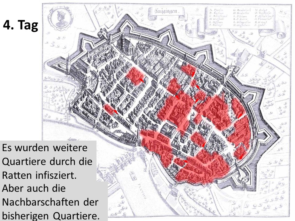 4.Tag Es wurden weitere Quartiere durch die Ratten infisziert.