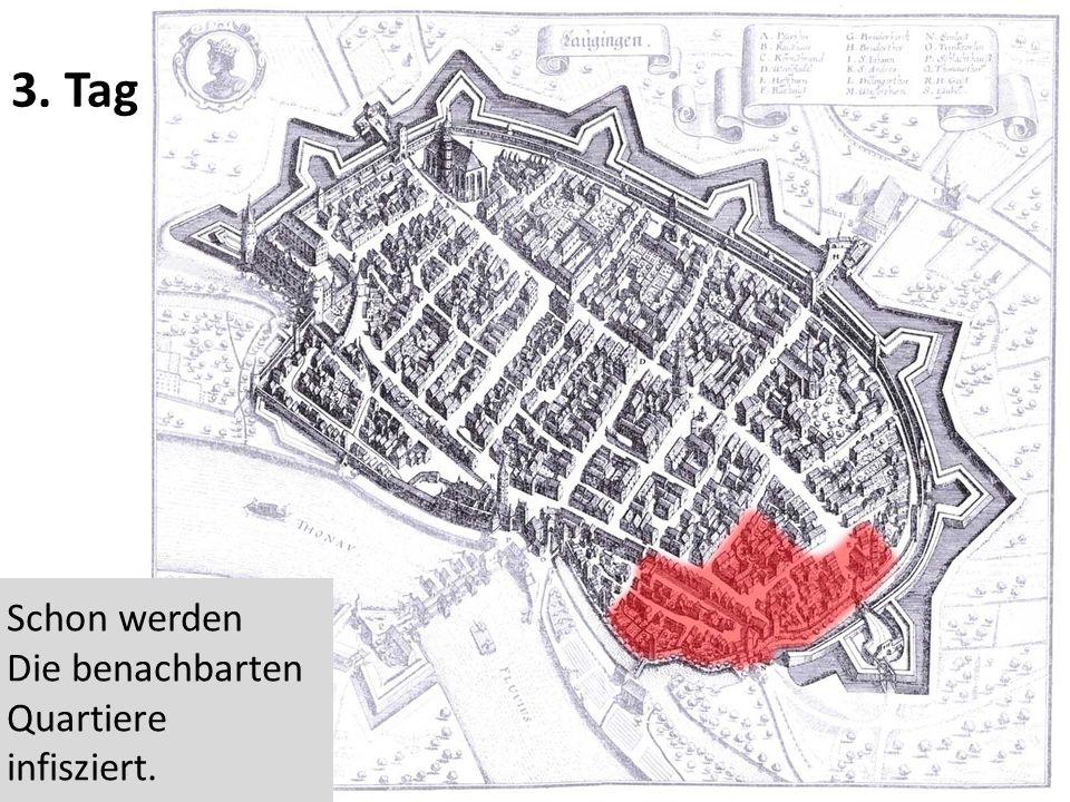 3. Tag Schon werden Die benachbarten Quartiere infisziert.