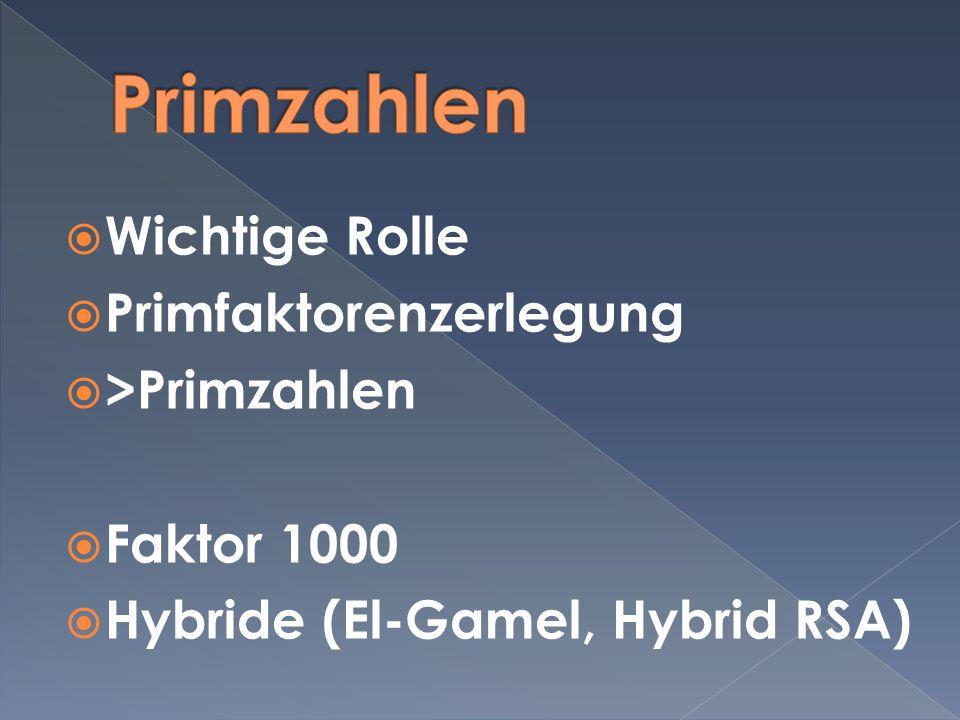 Wichtige Rolle Primfaktorenzerlegung >Primzahlen Faktor 1000 Hybride (El-Gamel, Hybrid RSA)