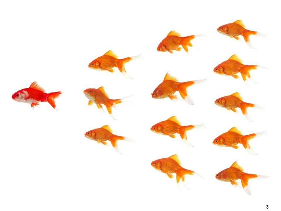 Das Netzwerk14 Managed Futures sind Anlageprodukte von börsennotierten Futures- oder Forward-Kontrakten.