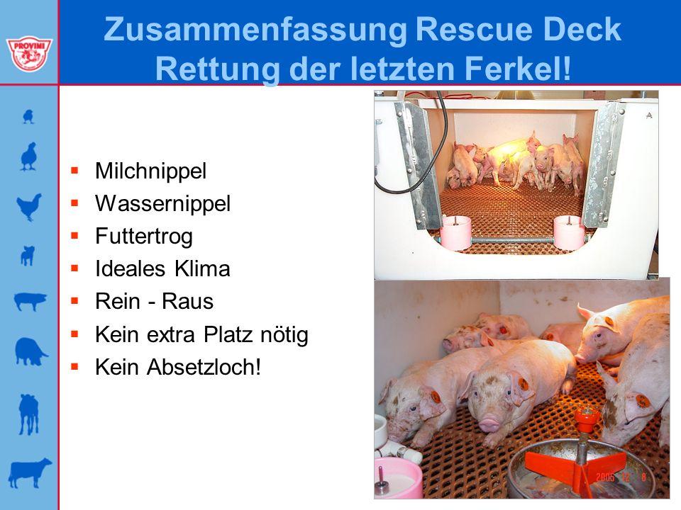 Zusammenfassung Rescue Deck Rettung der letzten Ferkel! Milchnippel Wassernippel Futtertrog Ideales Klima Rein - Raus Kein extra Platz nötig Kein Abse