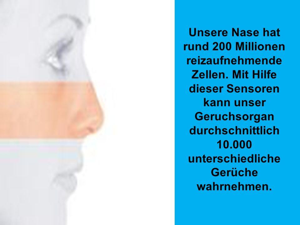 Der menschliche Körper in Zahlen Der Mensch hat insgesamt 639 Muskeln - davon befinden sich allein 40 im Gesicht. Der größte Muskel sitzt im Gesäß und