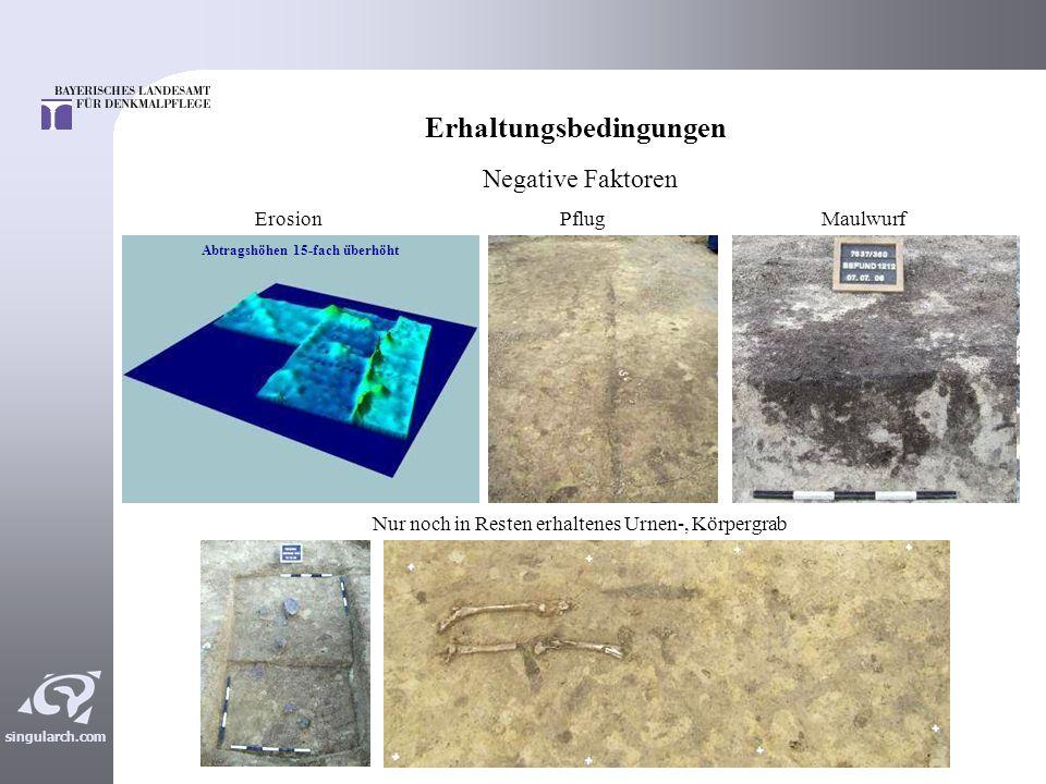 singularch.com Zwischenbilanz Bislang wurden ca.16 ha archäologisch untersucht.