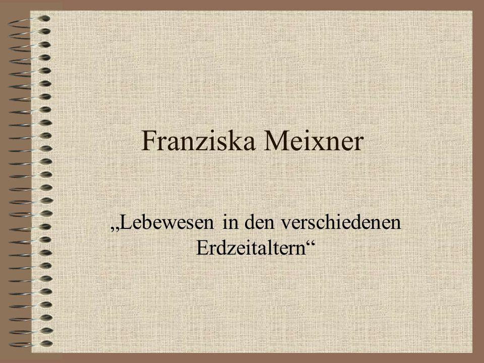 Franziska Meixner Lebewesen in den verschiedenen Erdzeitaltern