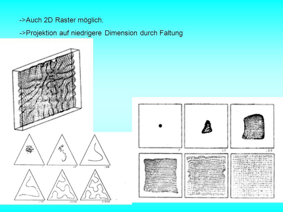 ->Auch 2D Raster möglich. ->Projektion auf niedrigere Dimension durch Faltung