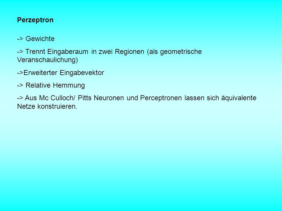 Perzeptron -> Gewichte -> Trennt Eingaberaum in zwei Regionen (als geometrische Veranschaulichung) ->Erweiterter Eingabevektor -> Relative Hemmung ->