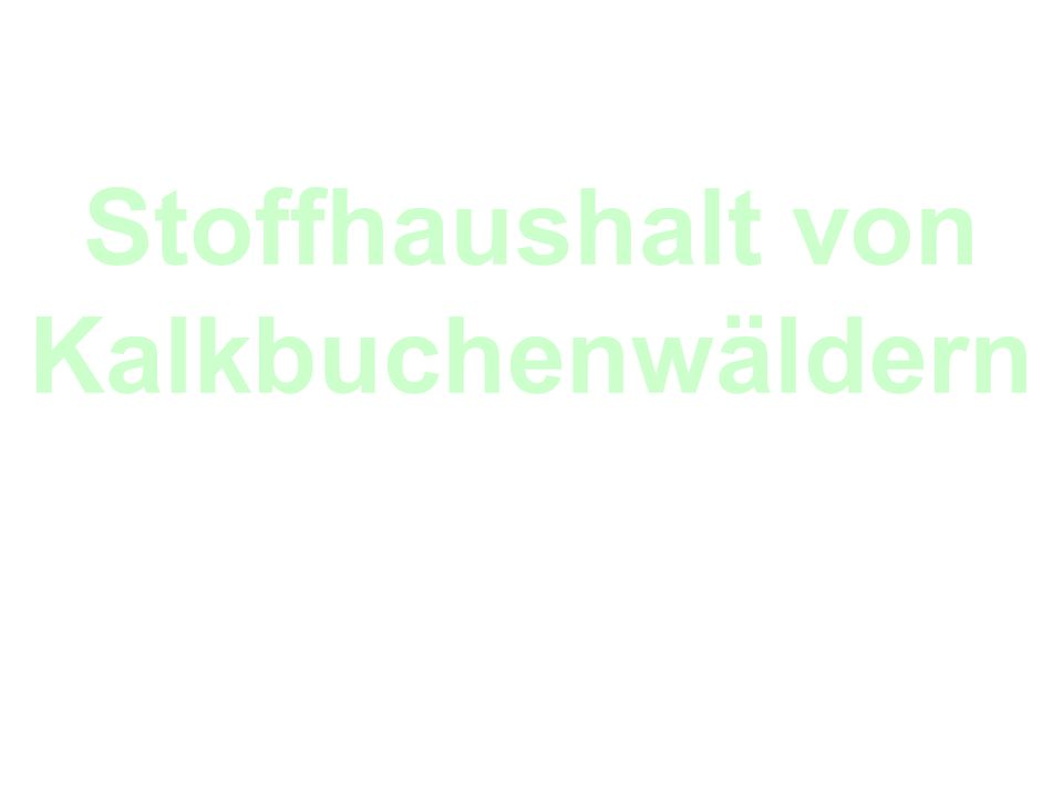 Landschaften und Ökosysteme Sommersemester 2006 Stoffhaushalt von Kalkbuchenwäldern Martin Stadtkowitz