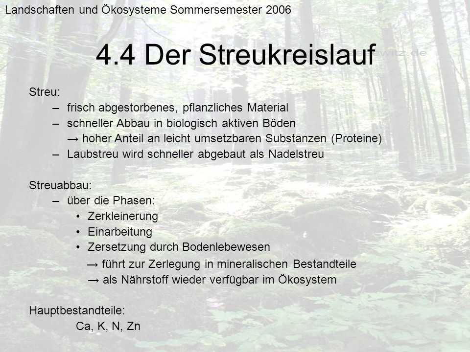 Landschaften und Ökosysteme Sommersemester 2006 4.4 Der Streukreislauf Streu: –frisch abgestorbenes, pflanzliches Material –schneller Abbau in biologi