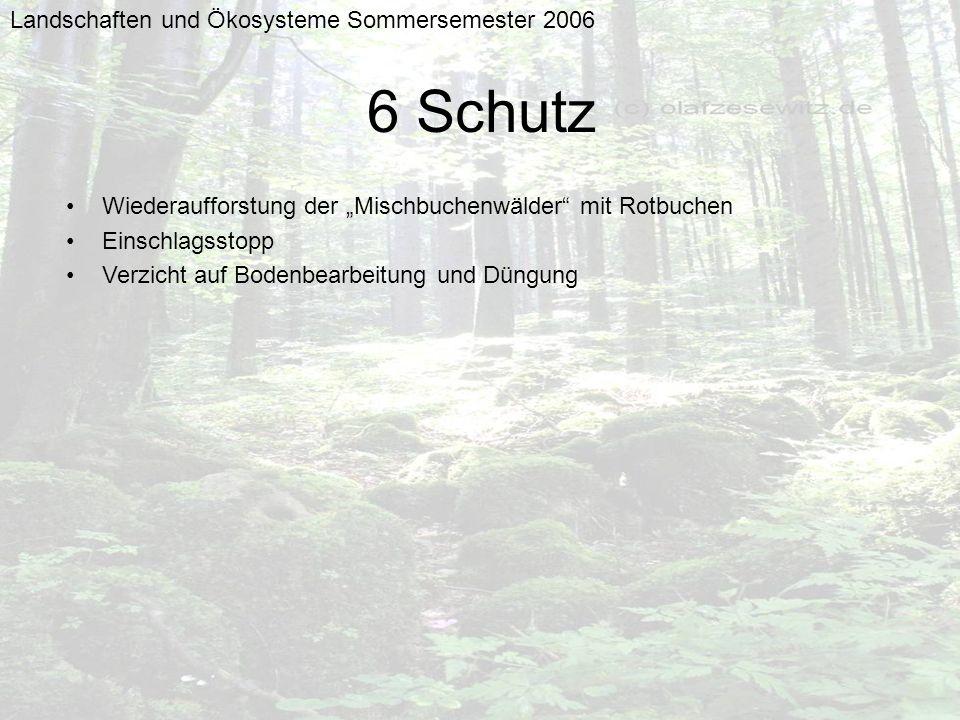 Landschaften und Ökosysteme Sommersemester 2006 6 Schutz Wiederaufforstung der Mischbuchenwälder mit Rotbuchen Einschlagsstopp Verzicht auf Bodenbearb