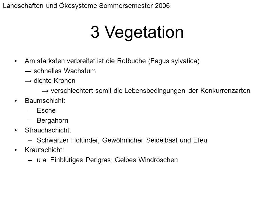 Landschaften und Ökosysteme Sommersemester 2006 3 Vegetation Am stärksten verbreitet ist die Rotbuche (Fagus sylvatica) schnelles Wachstum dichte Kron