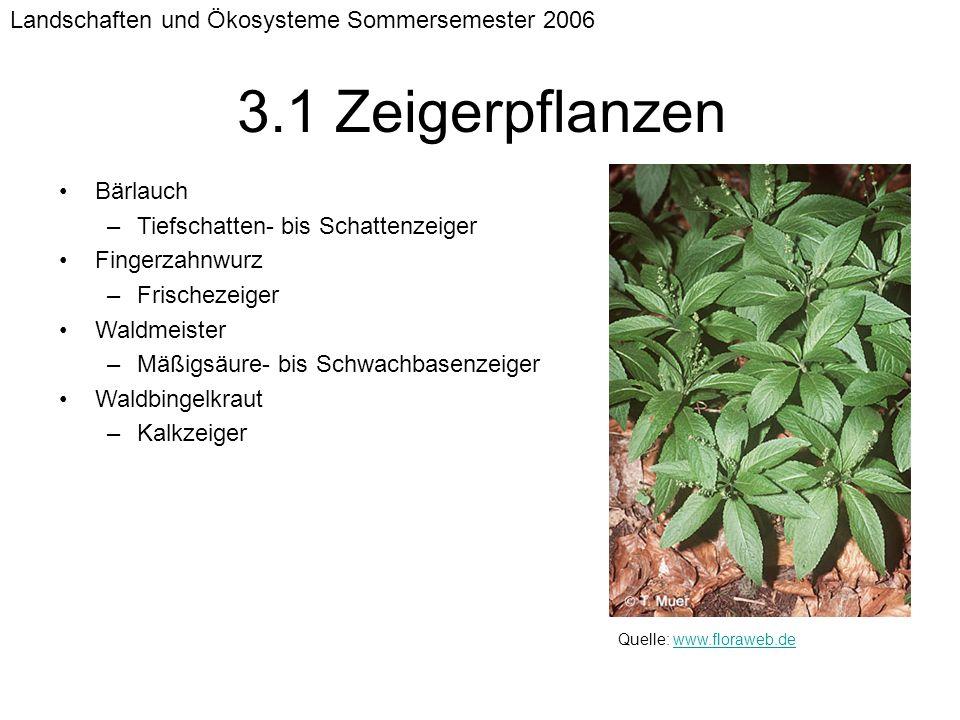 Landschaften und Ökosysteme Sommersemester 2006 3.1 Zeigerpflanzen Bärlauch –Tiefschatten- bis Schattenzeiger Fingerzahnwurz –Frischezeiger Waldmeiste
