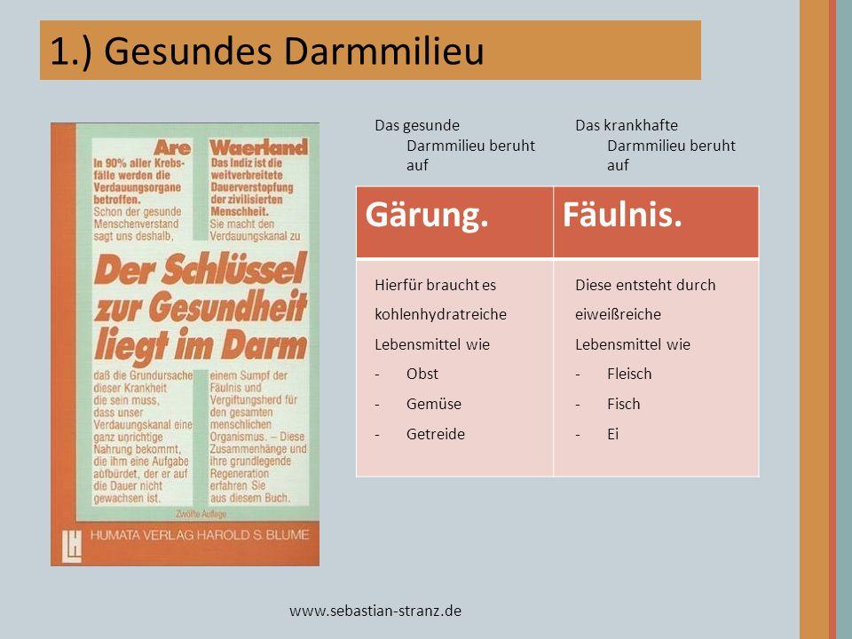www.sebastian-stranz.de 1.) Gesundes Darmmilieu Gärung.Fäulnis. Das gesunde Darmmilieu beruht auf Hierfür braucht es kohlenhydratreiche Lebensmittel w
