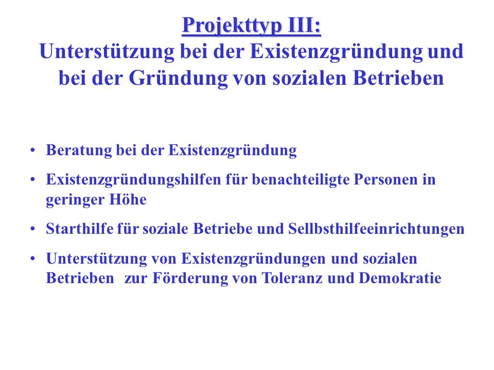 Projekttyp II: Projekttyp II: Unterstützung von Organisationen und Netzen, die sich für benachteiligte Menschen am Arbeitsmarkt einsetzen Unterstützung von Aktivitäten lokaler Vereine Unterstützung der Gründung bzw.