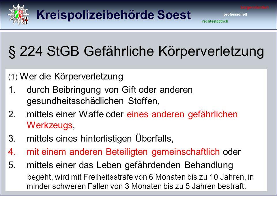 Kreispolizeibehörde Soest bürgerorientiert professionell rechtsstaatlich Körperverletzungsdelikte 1.