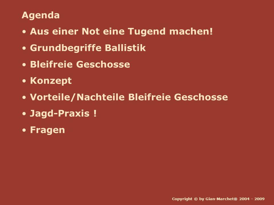 Copyright © by Gian-Marchet® 2004 - 2009 Agenda Aus einer Not eine Tugend machen! Grundbegriffe Ballistik Bleifreie Geschosse Konzept Vorteile/Nachtei