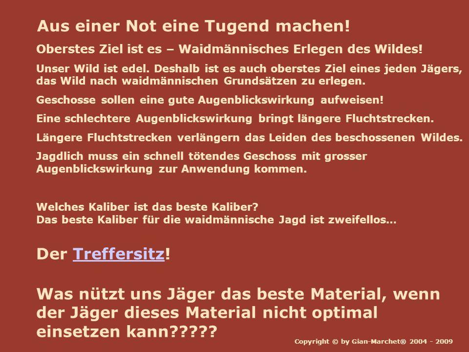 Copyright © by Gian-Marchet® 2004 - 2009 Grundbegriffe Ballistik Aussenballistik Innenballistik ZF- Visierlinie Laufachse Geschoss- Flugbahn Zielballistik 100m 160m 200m GEE Schuss-Distanz Geschoss-Flugbahn