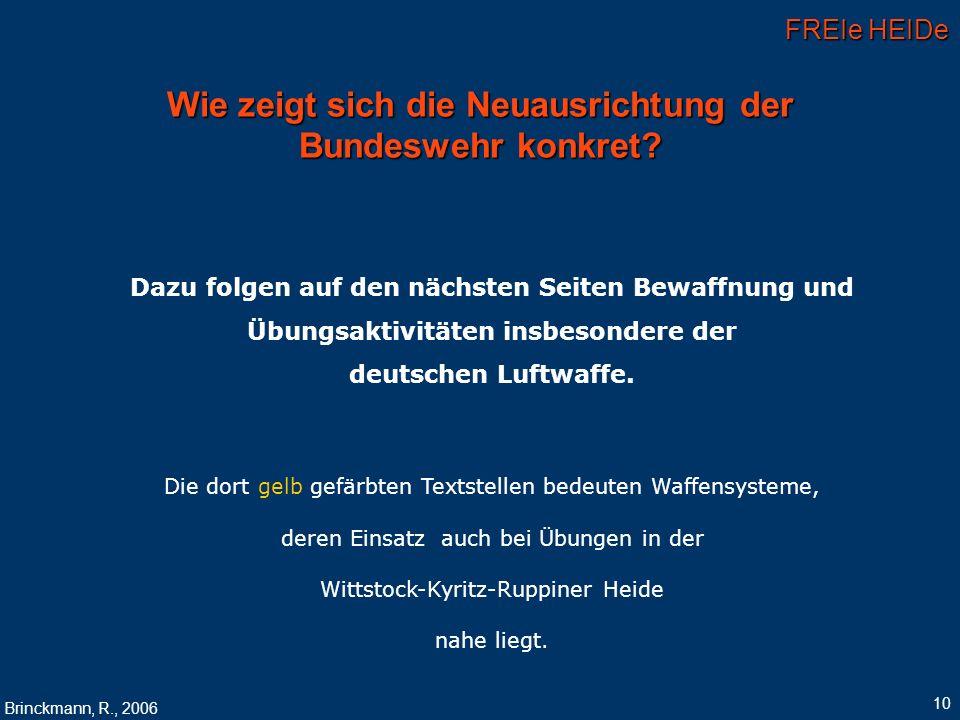 FREIe HEIDe Brinckmann, R., 2006 10 Wie zeigt sich die Neuausrichtung der Bundeswehr konkret? Dazu folgen auf den nächsten Seiten Bewaffnung und Übung