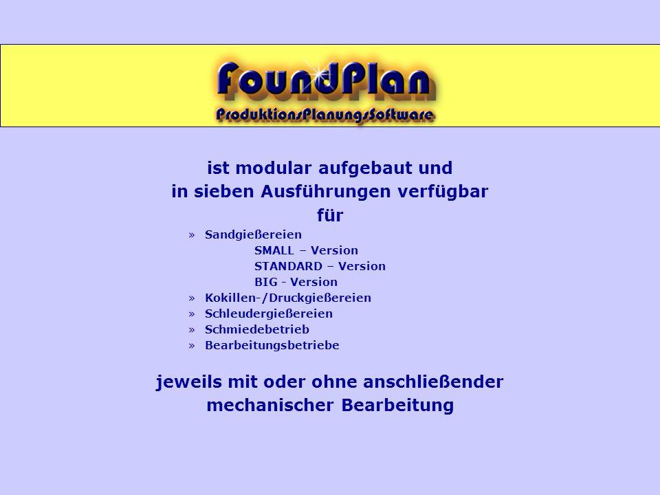 ist modular aufgebaut und in sieben Ausführungen verfügbar für »Sandgießereien SMALL – Version STANDARD – Version BIG - Version »Kokillen-/Druckgießer