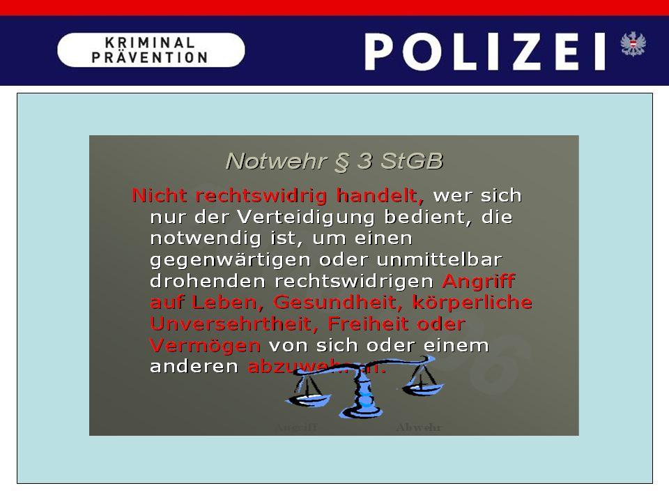 § 80 StPO Liegen hinreichende Gründe für die Annahme vor, dass eine Person eine mit gerichtlicher Strafe bedrohte Handlung ausführe, unmittelbar vorhe
