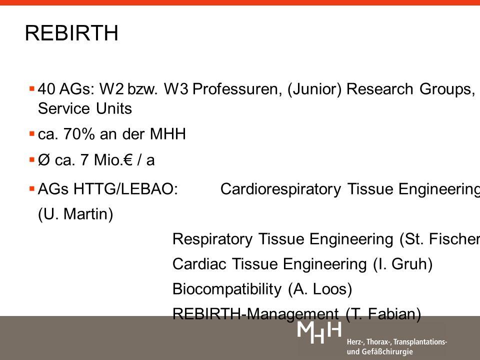 40 AGs: W2 bzw.W3 Professuren, (Junior) Research Groups, Service Units ca.