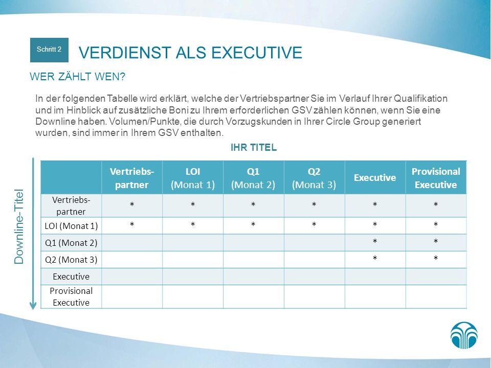 IHR TITEL Vertriebs- partner LOI (Monat 1) Q1 (Monat 2) Q2 (Monat 3) Executive Provisional Executive Vertriebs- partner ****** LOI (Monat 1) ****** Q1