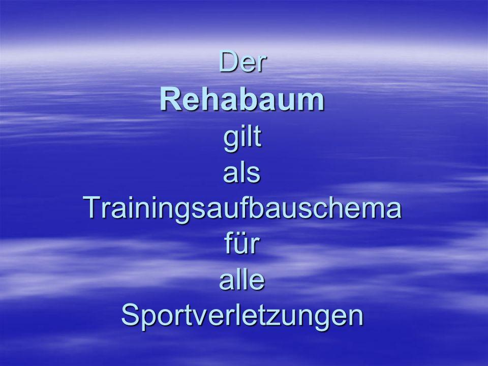 Der Rehabaum gilt als Trainingsaufbauschema für alle Sportverletzungen