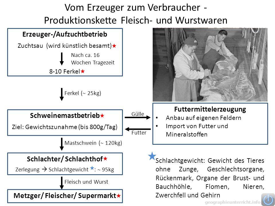 Vom Erzeuger zum Verbraucher - Produktionskette Fleisch- und Wurstwaren Erzeuger-/Aufzuchtbetrieb Zuchtsau (wird künstlich besamt) 8-10 Ferkel Nach ca.
