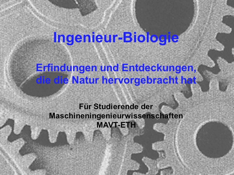 Microbial Ecology Group University of Zürich Ingenieur-Biologie Erfindungen und Entdeckungen, die die Natur hervorgebracht hat Für Studierende der Mas