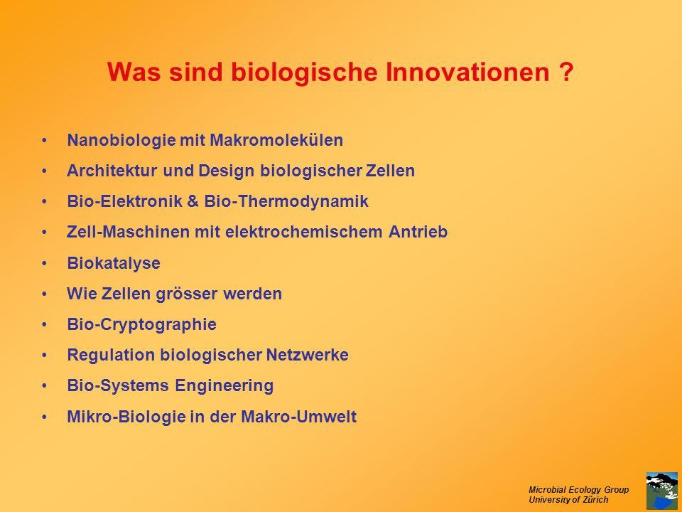 Microbial Ecology Group University of Zürich Was sind biologische Innovationen ? Nanobiologie mit Makromolekülen Architektur und Design biologischer Z