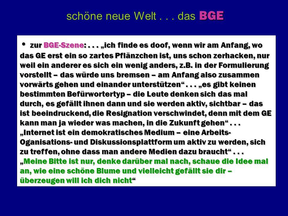 Problemhierarchie & Problemebenen Franz Schallhas (2007)