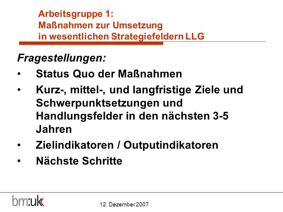 12. Dezember 2007 Arbeitsgruppe 1: Maßnahmen zur Umsetzung in wesentlichen Strategiefeldern LLG Fragestellungen: Status Quo der Maßnahmen Kurz-, mitte