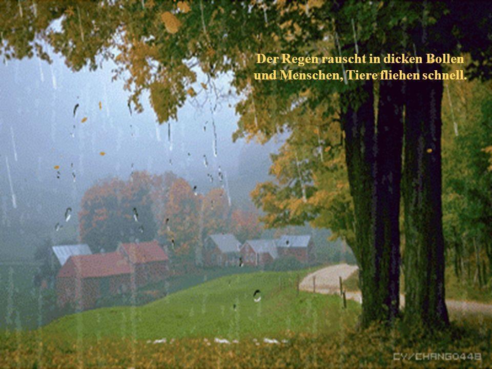 Von Ferne hört man Donnergrollen und Blitze zucken gleißend hell.