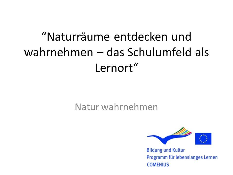 Naturräume entdecken und wahrnehmen – das Schulumfeld als Lernort Natur wahrnehmen