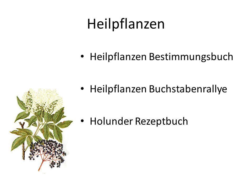 Heilpflanzen Heilpflanzen Bestimmungsbuch Heilpflanzen Buchstabenrallye Holunder Rezeptbuch