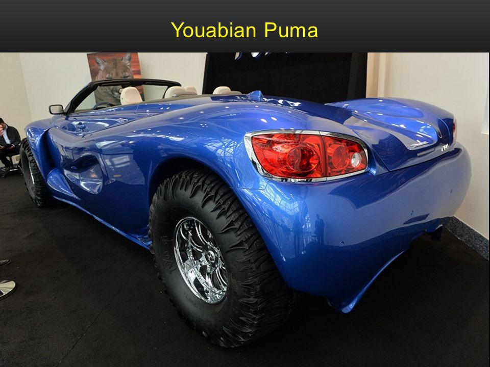 Youabian Puma 500 PS 44 Zoll Reifen zum Preis von 1,1 Million Dollar