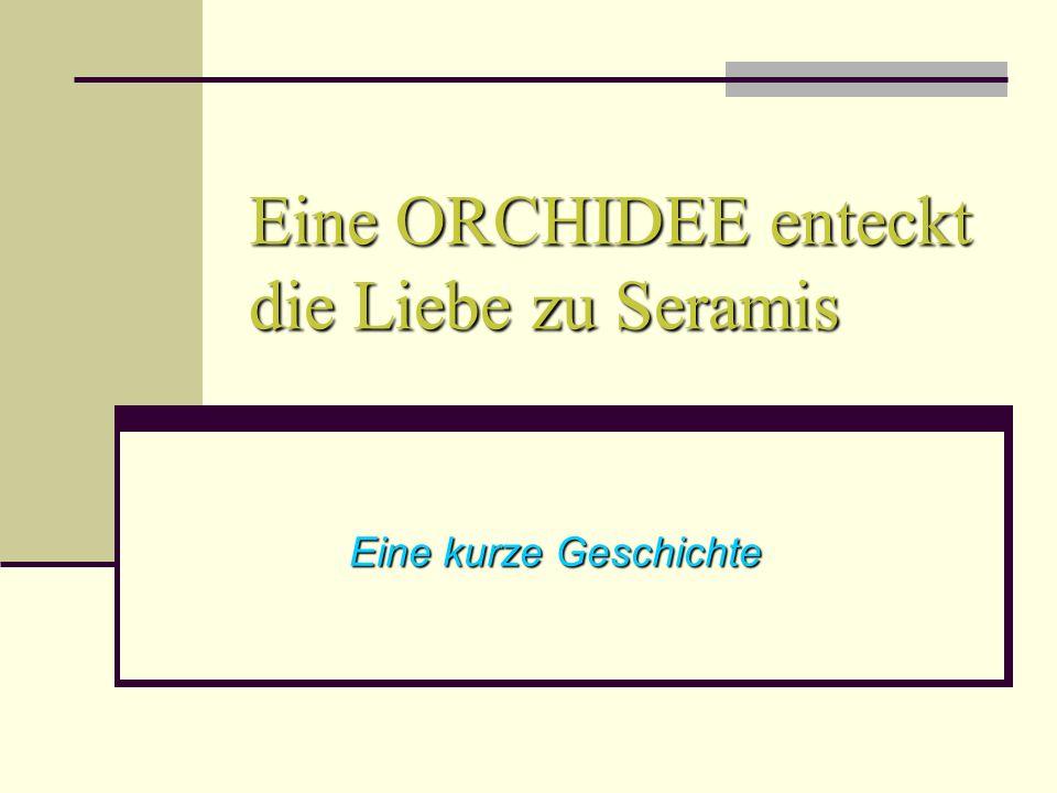 Eine ORCHIDEE enteckt die Liebe zu Seramis Eine kurze Geschichte