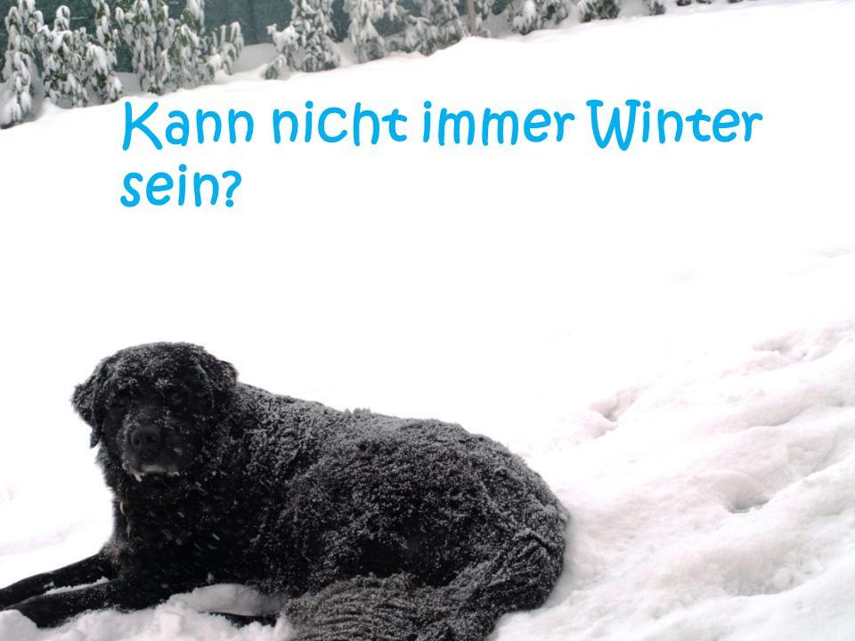 Kann nicht immer Winter sein?